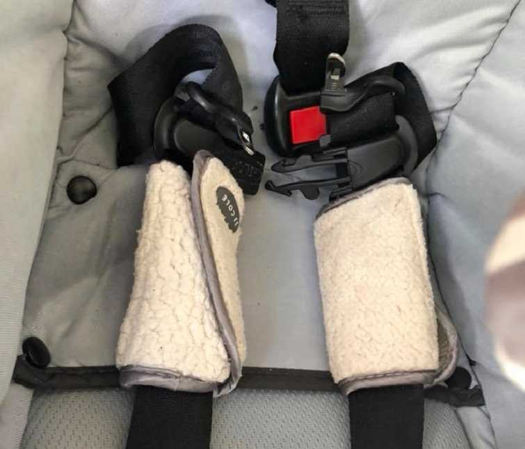 She was ejected\': Mom\'s urgent warning about seat belt covers as 2 ...